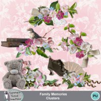 Family Memories clusters