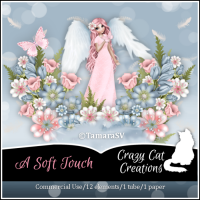 CCC_A Soft Touch